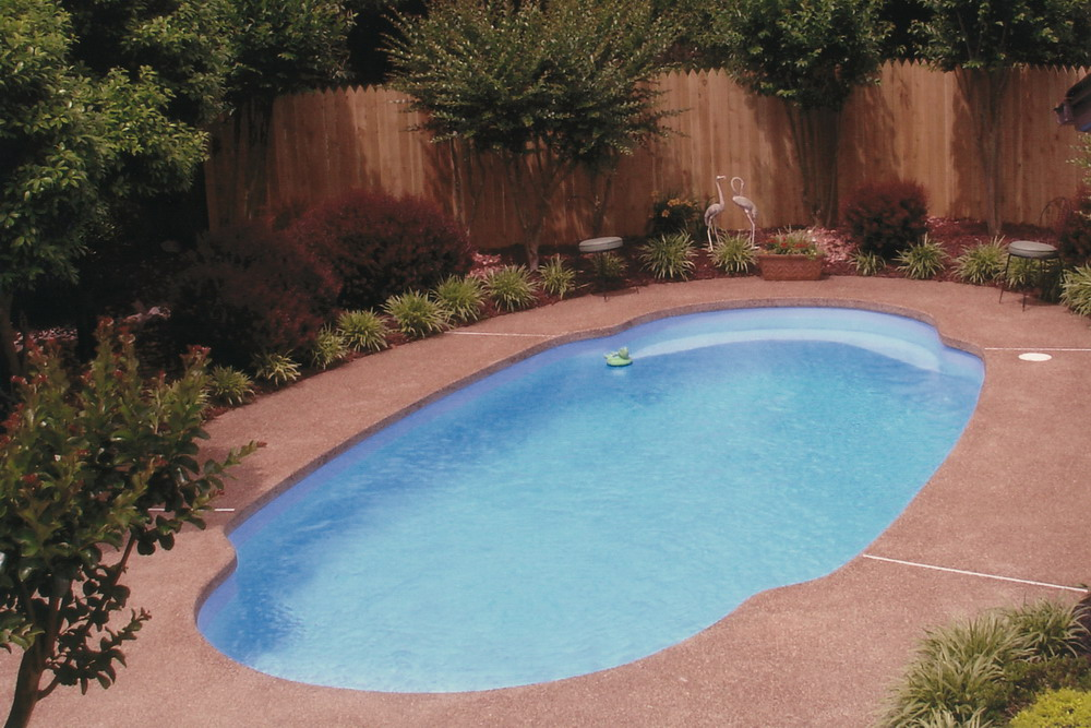 Beautiful back yard with in-ground pool by Catalina Pools